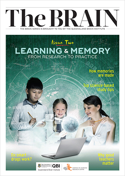 Brain Series Learning and Memory