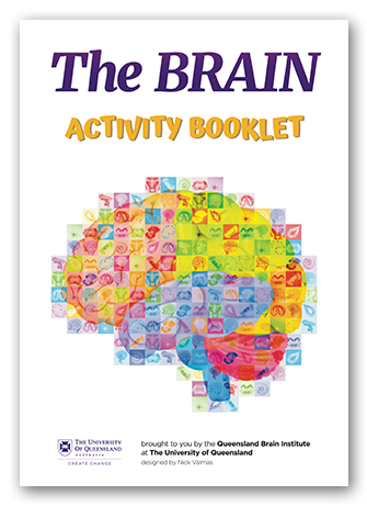 QBI Brain activity book