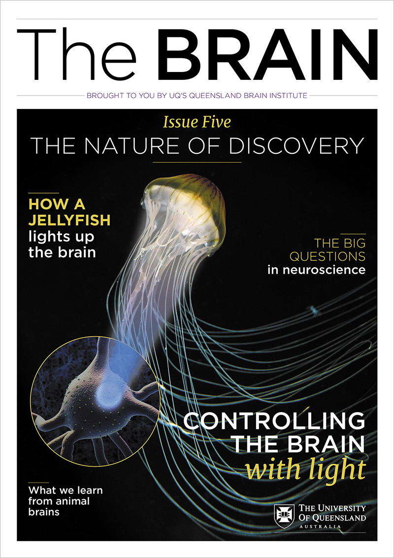 The BRAIN Nature of Discovery magazine