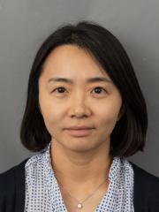 Dr Soo Lee