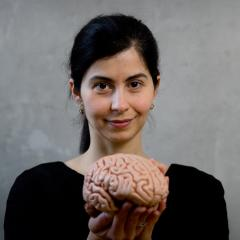 Schizophrenia research has won QBI's Dr Marta Garrido a highly competitive UQ Research Award.