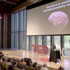 The Mathematics Of Intelligence
