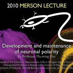 Merson Lecture