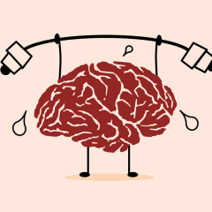 Brain stimulation may improve the general benefits of brain training by increasing our ability to process information.