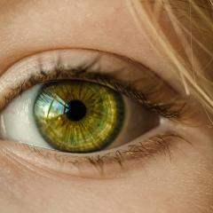 QBI researchers shed light on how our eyes process visual cues