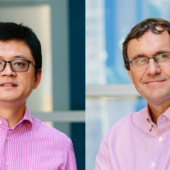 Professor Peter Visscher and Professor Jian Yang have had their work recognised by prestigious funding from the ARC.