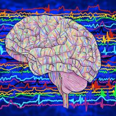Oscillations in brain activity influence how well we perceive objects in both expected and unexpected locations.