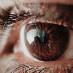 Researchers at the University of Queensland have confirmed the existence of an elusive pathway in the brain that enables some blind people to detect and respond to visual stimuli they do not 'see'.